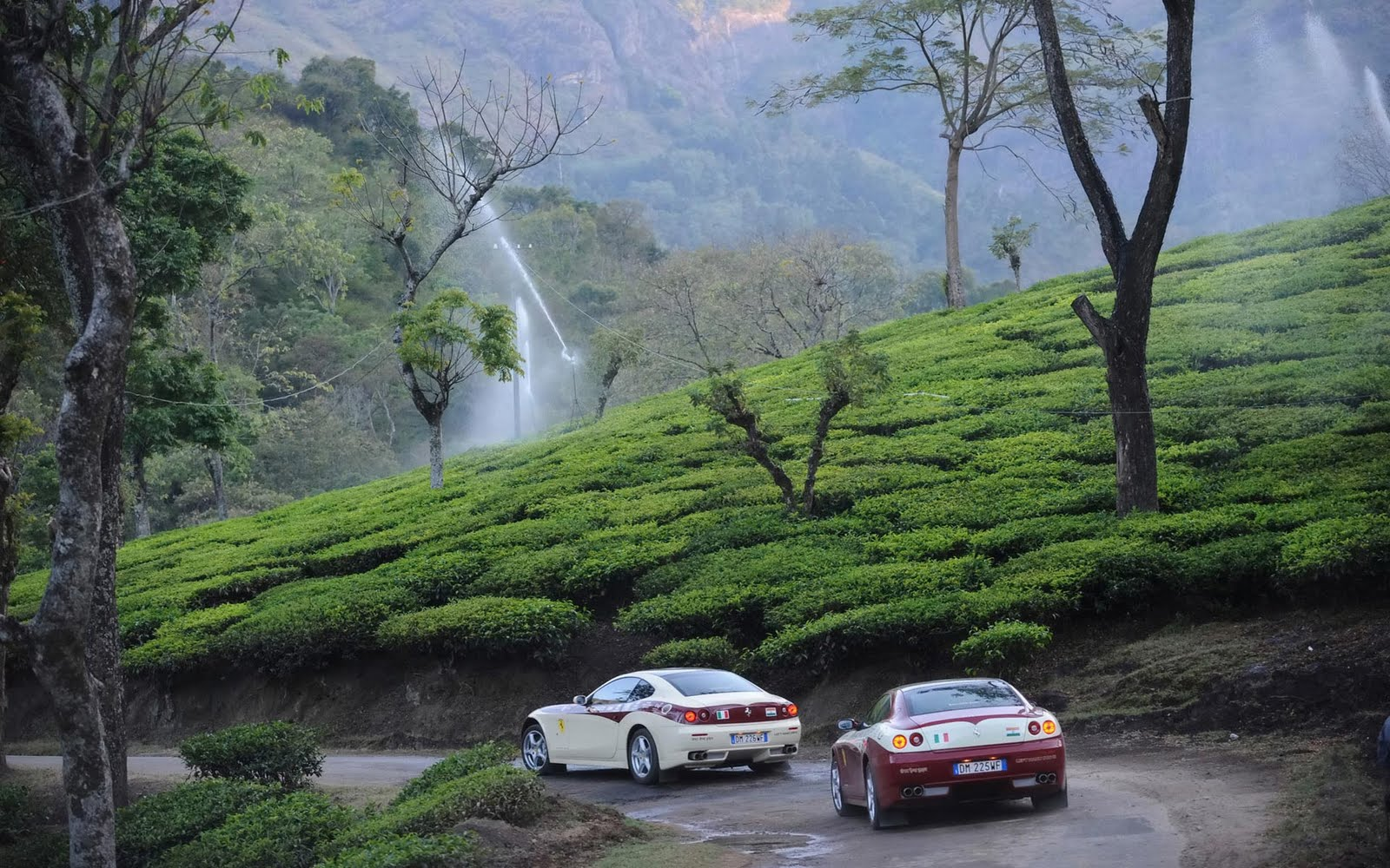 Ooty Tempo Rental